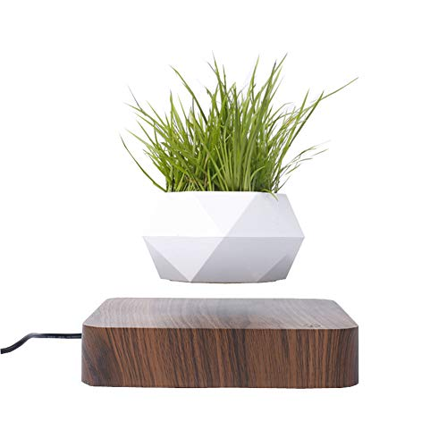 TSY Levitating Air Bonsai Pot for Air Plants Rotation Flower Pot Planters Magnetic Levitation Suspension Floating Pot Potted Plant Home Desk Decor (Brown)