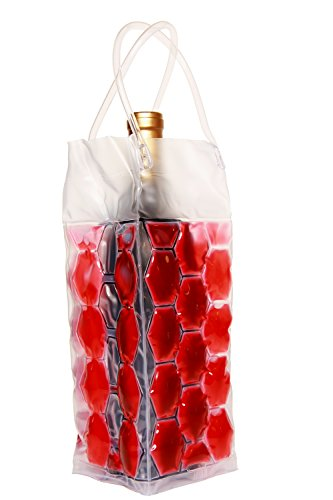Zees Inc Pocket Bottles Cs2001 Freezable Wine Tote, Red