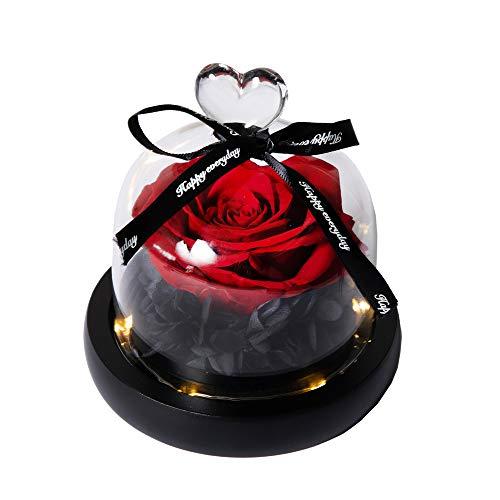 Hyindoor Rosa eterna, Fiore Magico con Luce a LED, Regalo di San Valentino Festa della Mamma Regalo Anniversario Matrimonio