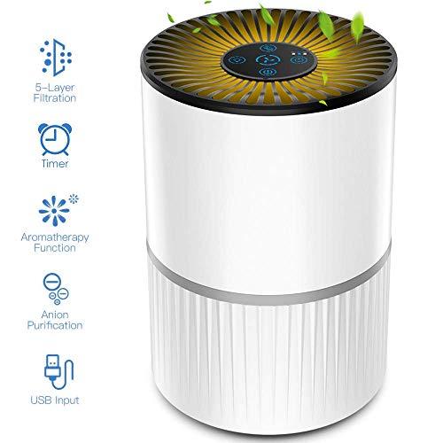 Luftreiniger mit HEPA-Filter & Ionisator,USB Negativ Ionen Luftreiniger mit 4-Lagen-Filtration und Timer, für Raucherzimmer,Wohnung, Schlafzimmer, Haus, Pollen, Pet Dander und Staub