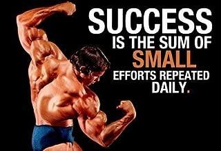 Lou Ferrigno Bodybuilding Motivational Art Silk Poster 13x20 24x36 inch