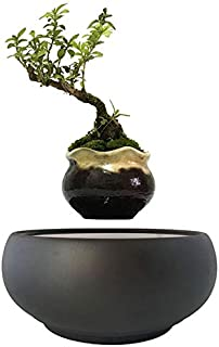 Zamtac 2019 Magnetic levitation Potted Plant Floating air Bonsai Tree Pot Garden Beautiful Gifts for Men Free shpping - (Color: 22 Ceramic airbonsai, Sheet Size: Small)