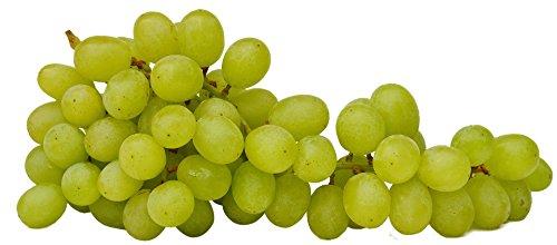 Dicke kernlose Weintrauben hell aus Südafika o. Chile 4,5 kg Box