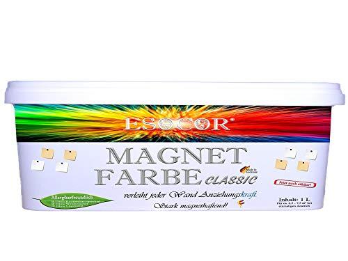 1 Liter ESOCOR MAGNETFARBE CLASSIC – Konservierungsmittelfrei – stark magnethaftend – sehr allergikerfreundlich – Ideal für sensible Innenräume + 2 Pin Magnete