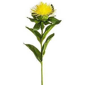 SilksAreForever 10″ Artificial Pincushion Protea Flower Stem -Yellow (Pack of 12)