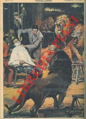 Barbiere rade domatore nella gabbia dei leoni del Circo Togni, a Torino.