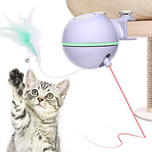DADYPET Giochi per Gatti, Giocattolo Gatto Interattivo con Piuma Automatico Ruota 360 °- USB Ricaricabile