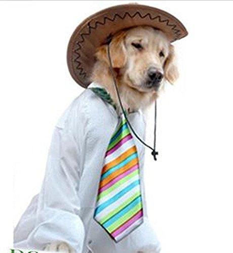 Yagopet Hundebinder, groß, verstellbare Halsbänder von 38,1-58,4 cm, für große Hunde, Haustierhalsbänder, Hundepflegeprodukte, Hundezubehör, 10 Stück