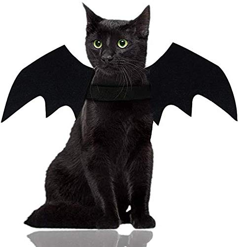 FayTun Halloween Pet Cat Bat Wing, Pet Cosplay Puntelli Pet Bat Wing costume, Halloween festa di compleanno Pet Dress up costume per cane gatto