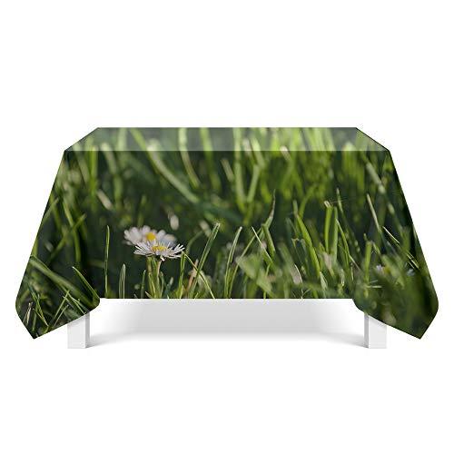 DREAMING-Ästhetische Blumenkunst Tischdecke Home Esstisch Stoff Tv-Schrank Couchtisch Stoff Runde Tisch Tischset 90cm * 140cm