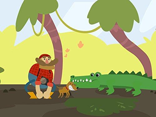 A Crocodile, a Toucan, and a Sloth