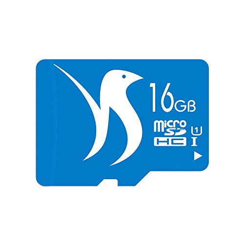 FATTYDOVE 16GB High Speed 2-Pack Micro SD Card with Adapter Compatible with Surveillance Camera Wyze, IP Security Camera, MP3/MP4 Player(16GB U1 2 Pack)