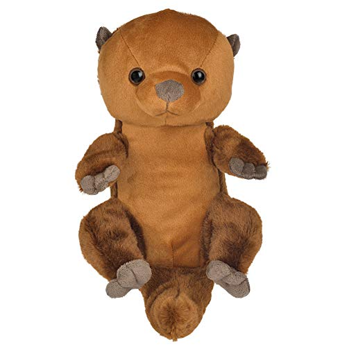 12in Sea Otter Stuffed Animal, Soft Floppy Cuddly Stuffed Sea Otter, Cute Stuffed Animal Plush Toys, Gifts for Kids Toddlers Baby on Birthday Thanksgiving Day, Christmas Day