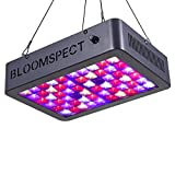 BLOOMSPECT 300W LED Grow Light for Indoor Greenhouse Hydroponic Plants Veg Bloom Flowering