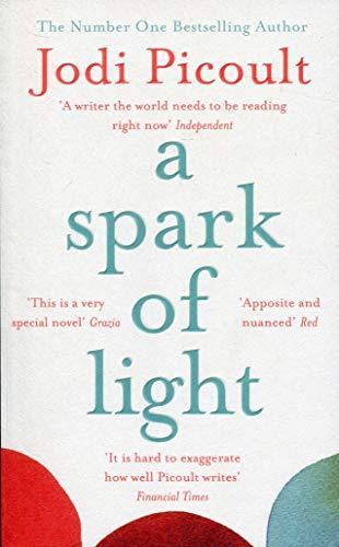 A SPARK OF LIGHT* (191 POCHE)