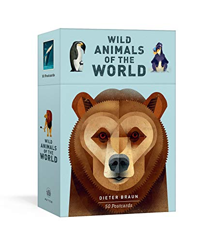Wild Animals of the World: 50 Postcards (Stationery)