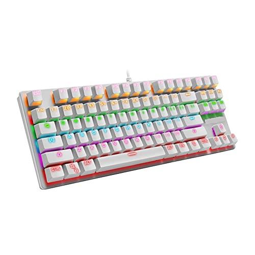 LPZW. Spiel mechanische Tastatur. USB 87. Taste RGB Hybrid-Hintergrundbeleuchtung LED Geeignet für Gamer-Desktop-Laptop-Gaming-Tastatur (Axis Body : Other, Color : White)