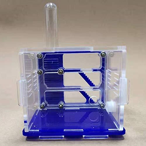 Jlxl Nido De Hormigas for Niños Sientific Abservation DIY Toy Juguetes De Estudio De Biolgy Castillo De La Granja Ant House Educativos
