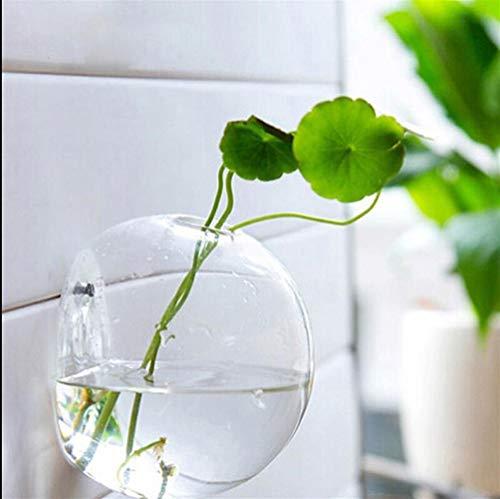WBFN Bloempotten Bloembakken Tuin Supplies Opknoping Bal van het glas bloemenvazen plantenbakken Terrarium Container Home Garden Decoration (Color : 12cm, Sheet Size : Medium)