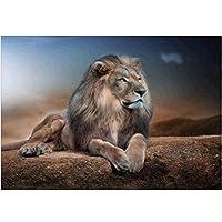 QMGLBG 5Dダイヤモンド塗装 草原ののんびりしたライオン動物のダイヤモンド塗装クリスタルラインストーンアーティスト家の装飾30*40cm