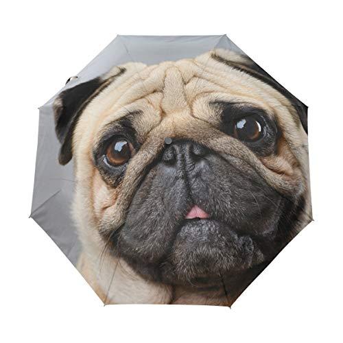 Paraguas de Viaje pequeño a Prueba de Viento al Aire Libre Lluvia Sol UV Auto Compacto 3 Pliegues Cubierta de Paraguas - Perrito Animal