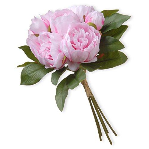 National Tree 12 Inch Light Pink Peony Flower Bundle (RAS-TMLP783-1)