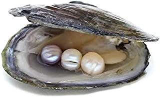 Contains freshwater pearl contains 3 pearl beads