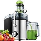 Centrifuga Frutta e Verdura, Estrattore di Succo Freddo Acciaio Inossidabile con modalità a 2 Velocità, 75MM Bocca Larga Facile da Pulire con Funzione Antigoccia, Senza BPA, 800W