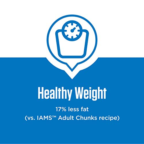 Dog | IAMS PROACTIVE HEALTH Adult Healthy Weight Control Large Breed Dry Dog Food with Real Chicken, 29.1 lb. Bag, Gym exercise ab workouts - shap2.com