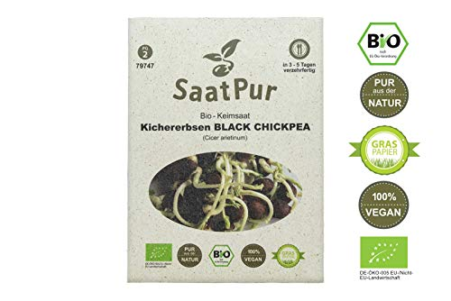 SaatPur Bio Keimsprossen - Kichererbsen Black Chickpea Sprossen, Microgreens - 50g