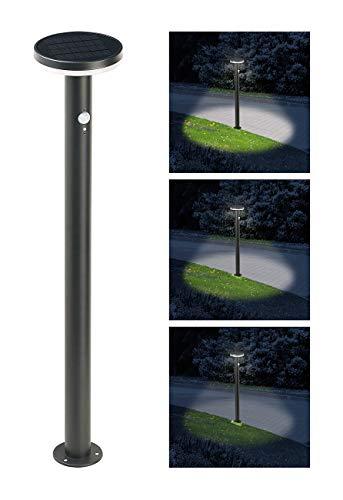 Lunartec Edelstahl: LED-Solar-Wegeleuchte SWL-600, PIR-Sensor, Nachtlicht, 600 Lumen (Stehlampen)