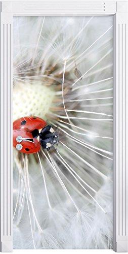 Stil.Zeit Möbel Kleiner Marienkäfer auf einem Löwenzahn B&W Detail als Türtapete, Format: 200x90cm, Türbild, Türaufkleber, Tür Deko, Türsticker