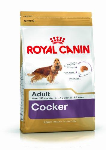 Royal Canin Cocker 25 Adult Hundefutter 12 kg, 1er Pack (1 x 12 kg)
