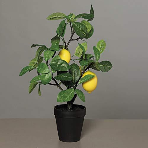 mucplants Künstlicher Zitronenbaum mit 3 Zitronen Höhe 55cm getopft Topfpflanze Tischdeko Zitruspflanze