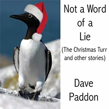 Not a Word of a Lie (The Christmas Turr and Other Stories)