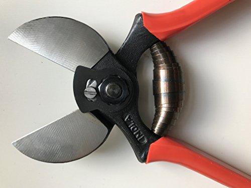 Coton et sécateur lisam 3/B/Ultra léger 19 cm Professionnel Double Lame Ciseaux