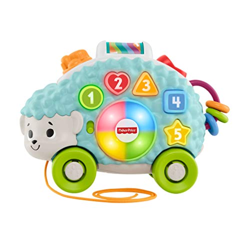 Fisher-Price Erizo Linkimals, Juguete interactivo bebés +9 meses (Mattel, GJB06) , color/modelo surtido