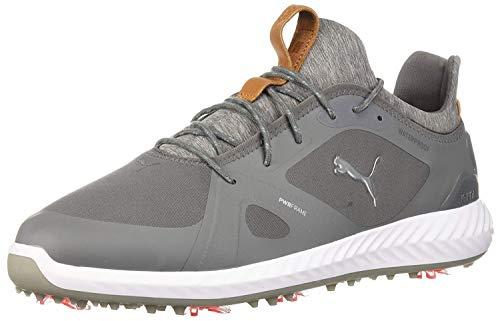 PUMA Golf Men's Ignite Pwradapt Golf Shoe, Quiet Shade/Quiet Shade, 9.5 Medium US