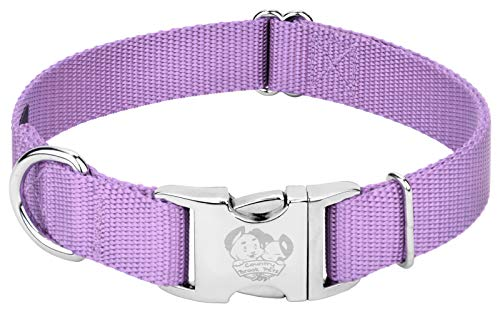 Country Brook Design - Vibrant 25 Color Selection - Premium Nylon Dog Collar with Metal Buckle (Large, 1 Inch, Lavender)