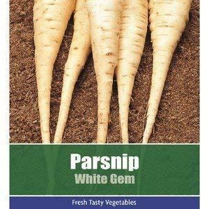 Ree Pastinake Weiß Gem Gemüse Pflanze 275 Samen
