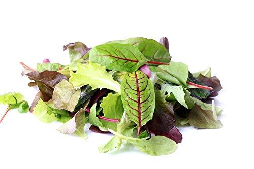 Baby Leaf - mezcla elegante: Amazon.es: Jardín