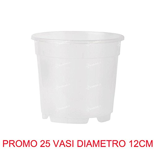 25 pots pour orchidées Ø12 cm complètement transparents Promo