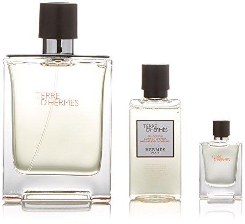 Hermès Terre d'Hermès Geschenkset (Vaporisateur/Spray 100ml, Mini 5ml + Duschgel 40ml)