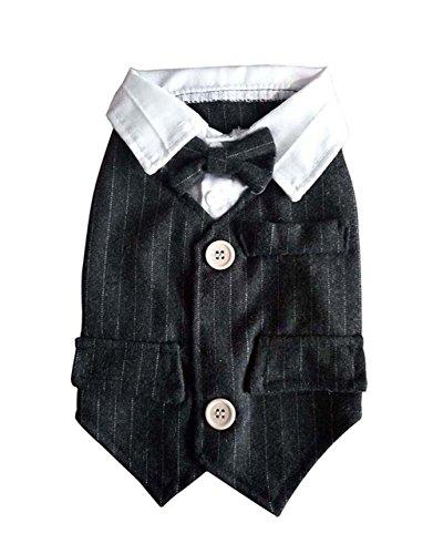 Chien Vêtements pour animaux Vêtements Chiot Vêtements Noir Gentleman pour homme, tour de poitrine 40 cm