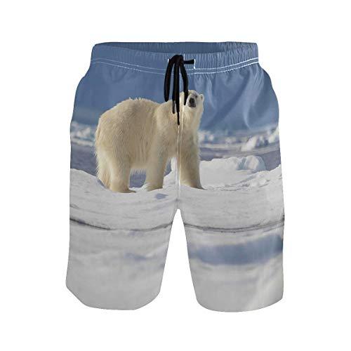 Troncos de natación para Hombre Oso Polar Animal Shorts de Playa de Secado rápido Shorts de Tabla de Surf de Verano (Talla M)