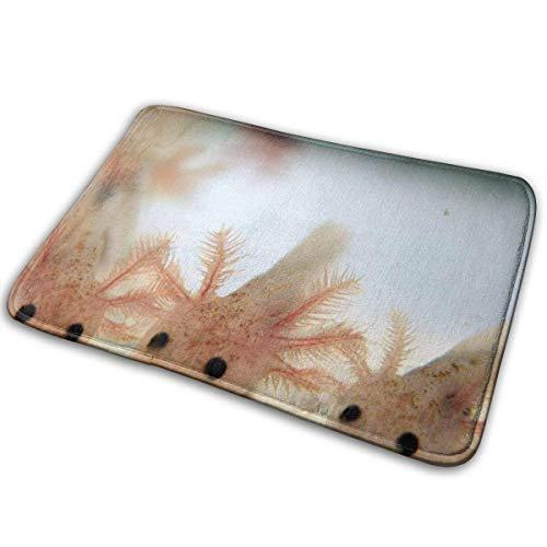 xinping Lindo tapete de baño Axolotl antideslizante absorbente alfombra de baño para interior/exterior/cocina/entrada/baño 15.7 x 23.6 pulgadas