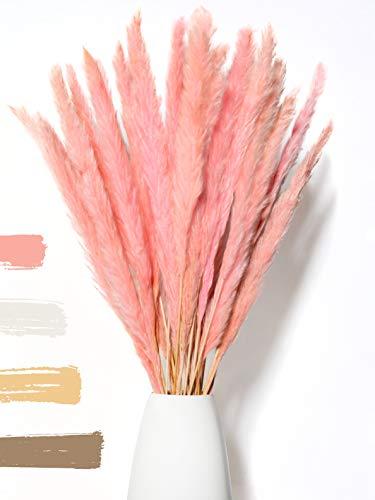 WHITE LUXURY - Pampasgras klein als Trockenblumen EIN Hingucker - ewig haltbares Pampasgras getrocknet für Trockenblumen Deko - Pampasgras Deko & getrocknete Blumen - Trockenblumenstrauß Vase (Pink)