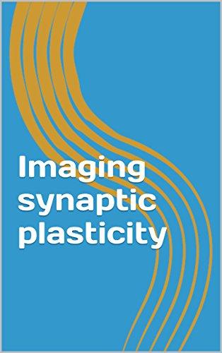 Imaging synaptic plasticity (English Edition)