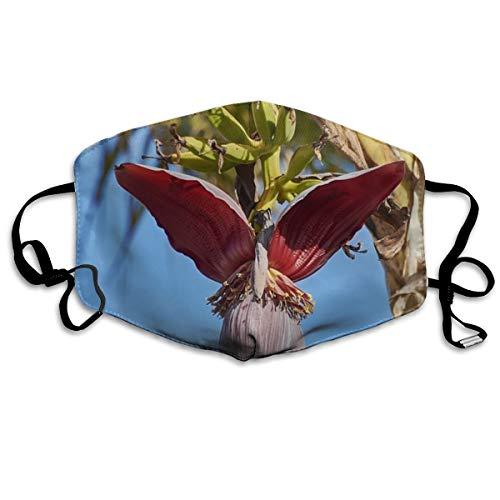 Banaan Flower Tree Gepersonaliseerde maskers winddichte warme maskers waterdichte maskers kunnen worden hergebruikt bij het uitgaan
