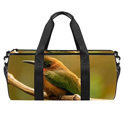 Borse da spiaggia da viaggio, grande sport palestra durante la notte Duffle europeo Bee-Eater uccello stampa borsa a tracolla con tasca asciutta bagnato